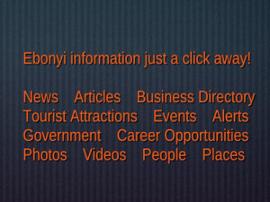 Some of the information categories in EbonyiOnline.com